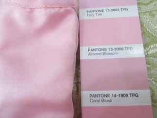 pantone color check